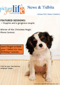 Picture Your Life Photography - News & Tidbits Feb. 2012