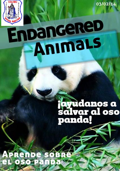 El Oso Panda (03/02/2014)
