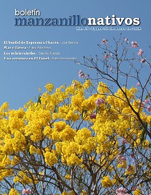 Manzanillo Nativos