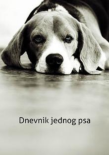 Tužna istina o napuštenim psima