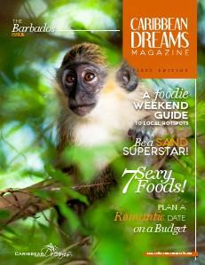 Caribbean Dreams Magazine Volume 1