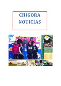CHIGORA NOTICIAS Marzo 2014