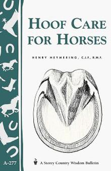 Άλογα - Donkeys