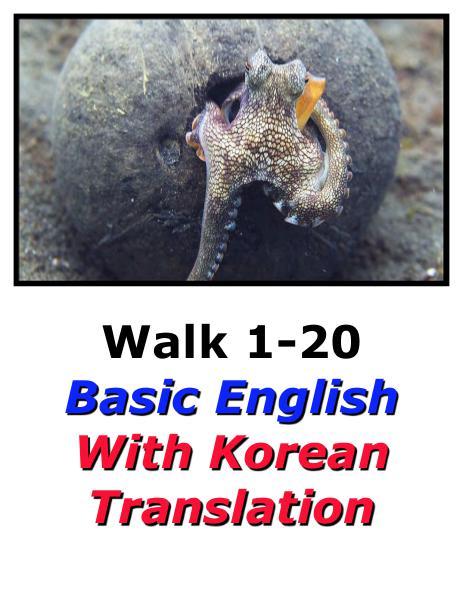 Learn English Here with Korean Translation-Walk 1 #1-20