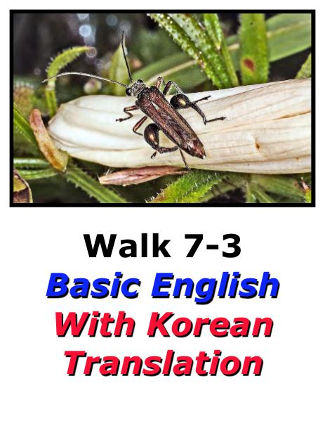 Learn English Here with Korean Translation-Walk 7 #7-3