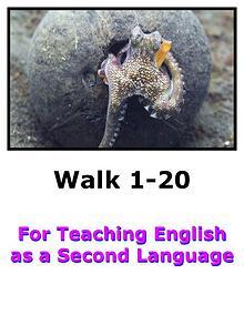 Teach English Here-Walk 1