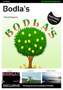 Bodla's Family Express