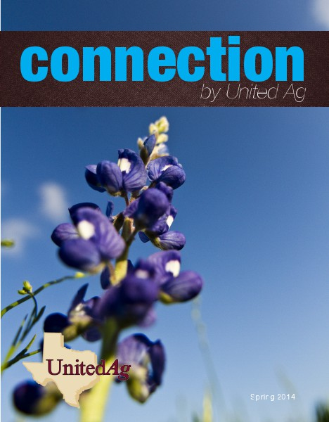 Connection Spring 2014