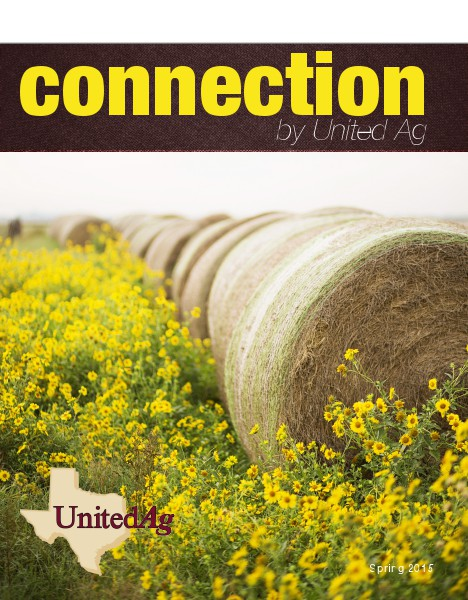 Connection Spring 2015