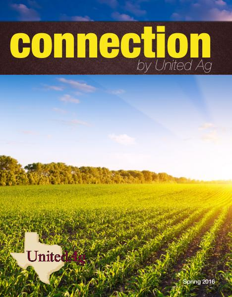 Connection Spring 2016