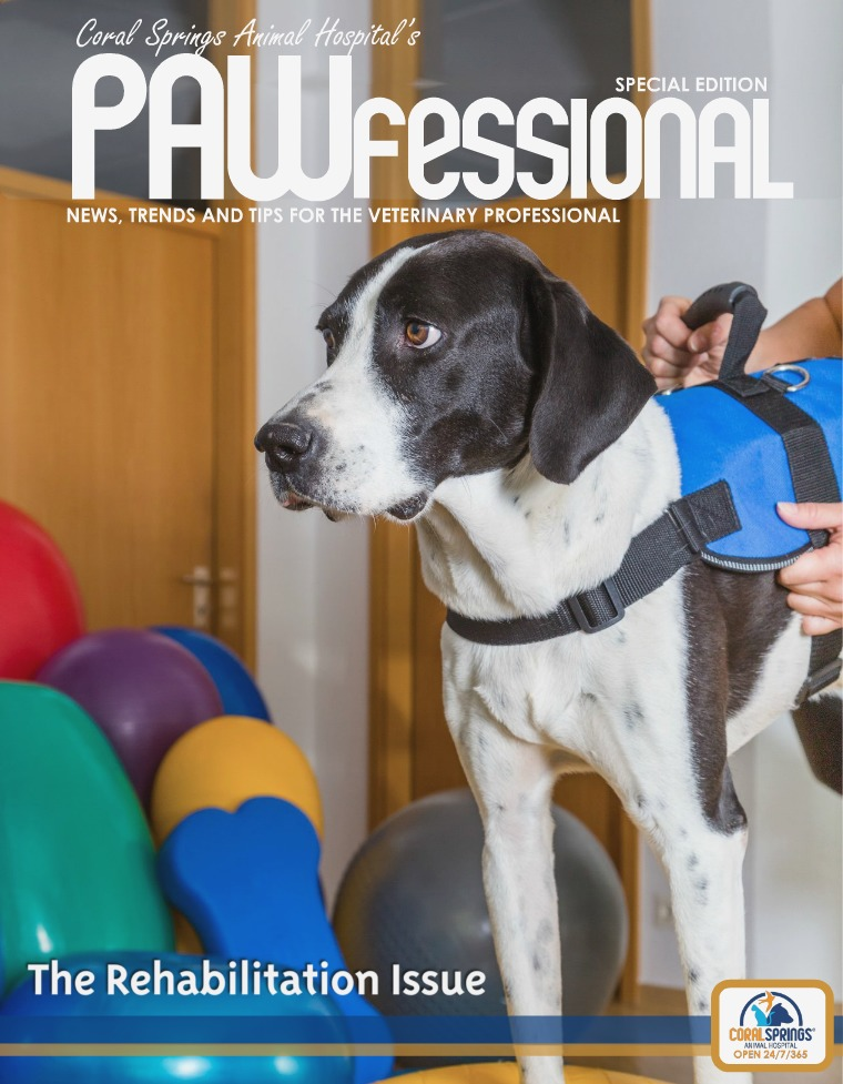 PAWfessional Rehab Issue 2017