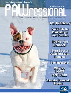Coral Springs Animal Hospital's Pawfessional Winter 2013