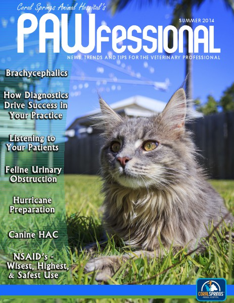 Coral Springs Animal Hospital's Pawfessional Summer 2014