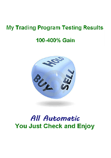 My Stock Trading Program Testing Results