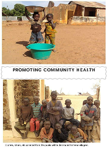 PROMOTING COMMUNITY HEALTH ()