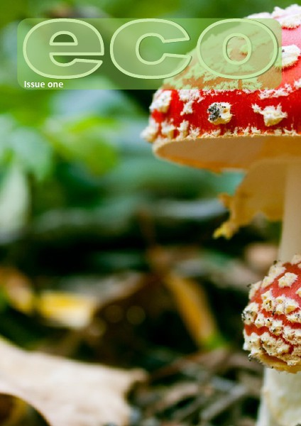 eco - issue one
