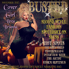 BUSTED NOVEMBER ISSUE