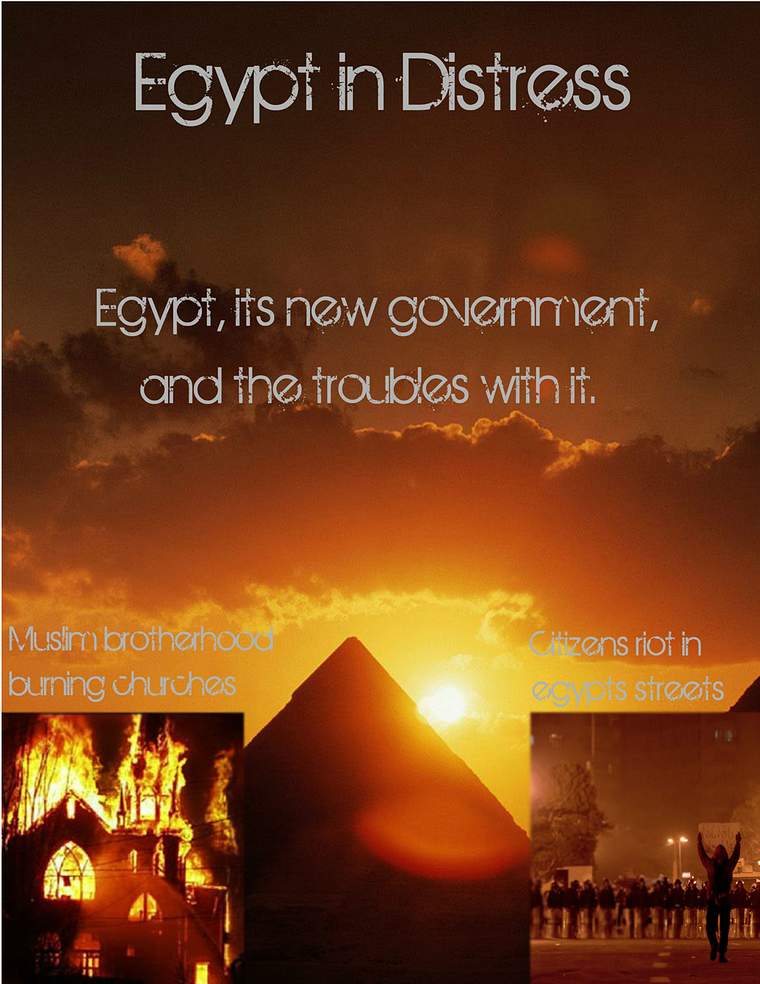 egypt in crisis march 2014
