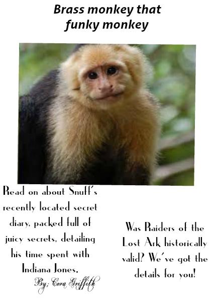 Brass Monkey that Funky Monkey March 2014
