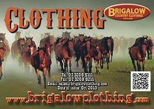 Brigalow Country Catalogue