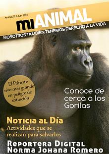 Reportaje sobre Gorilas