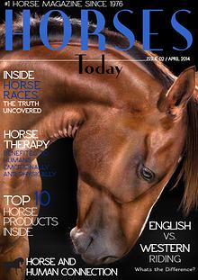 Horses Today