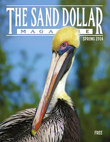 The Sand Dollar Magazine