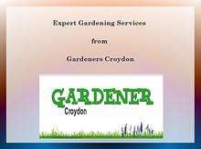 Expert Gardening Services in Croydon