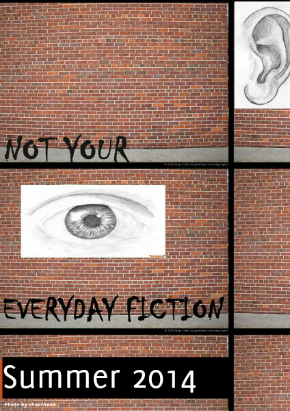 Not Your Everyday Fiction Summer 2014