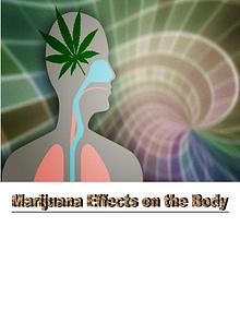 Some Effects of Marijuana On Body