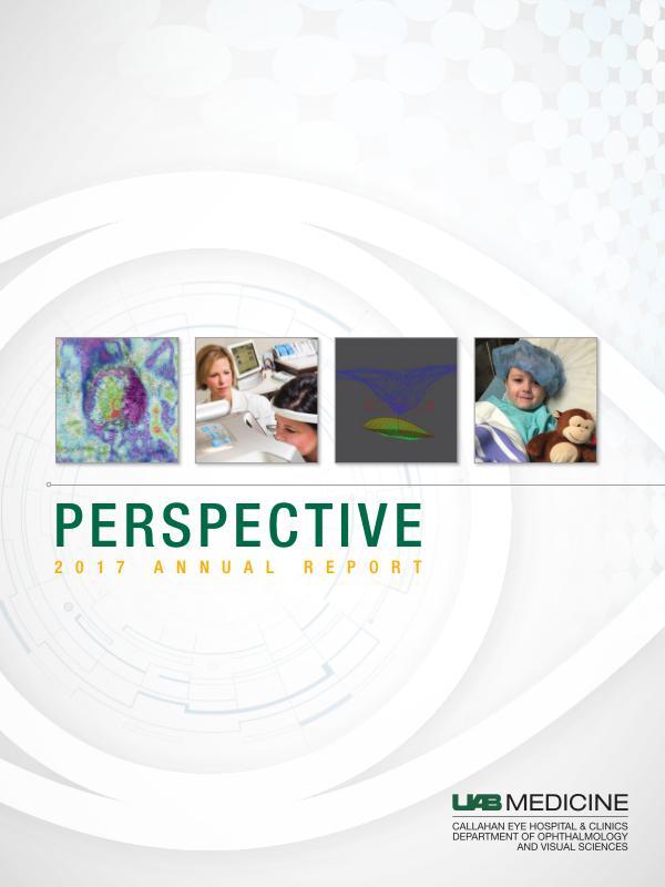 Perspective 2017 Annual Report Perspective 2017 Annual Report