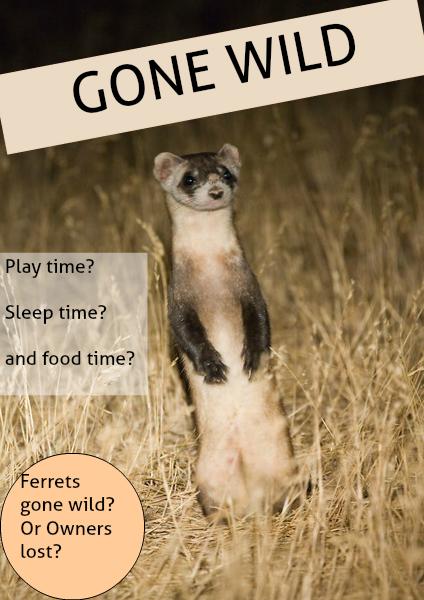 Gone wild Volume 1 April 2014
