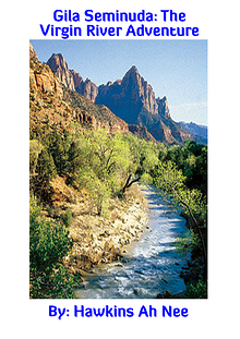 Gila Seminuda: The Virgin River Adventure