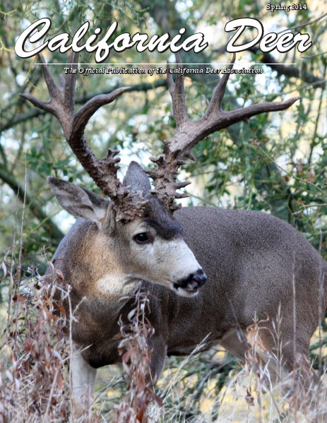 California Deer Spring 2014