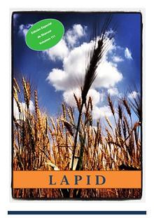Lapid