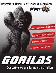 Gorilas al alcance de un click