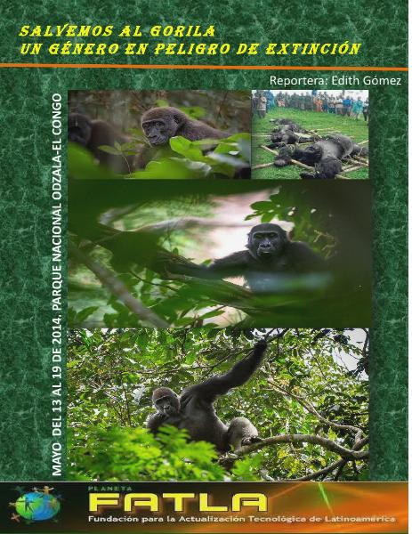 Salvemos al Gorila. Un género en peligro de extinción Mayo 2014