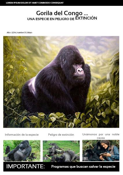 Gorila Gorila