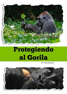 Protegiendo a los Gorilas de Odzala