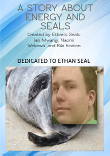 A Story about Energy and Seals