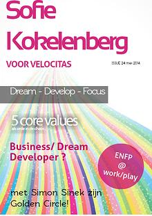 Visual CV or Job applications
