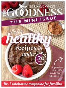 The Goodness Magazine - MINI ISSUE