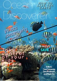 Coral Reef Destruction Magazine