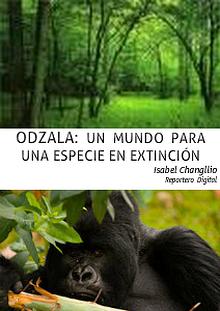 Odzala: un mundo para un especie en extinción