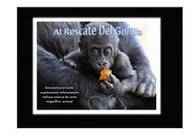 Al Rescate Del Gorila