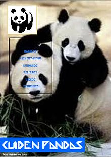 CUIDEN PANDAS