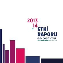 Endeavor Etki Raporu 2013-2014