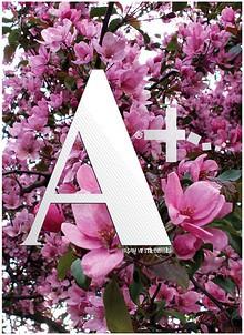 Aplus Dergi - Sayı 24