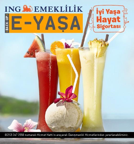 E-YAŞA 02