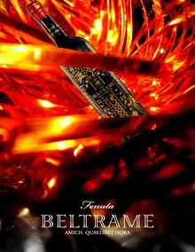 Tenuta Beltrame Since 1488(english).pdf